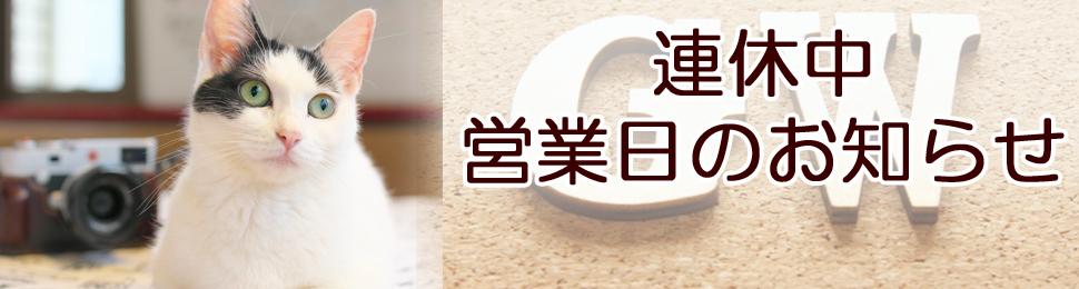 ~連休中 営業日のお知らせ~